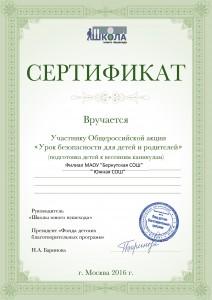 СЕРТИФИКАТ УЧАСТНИКА 1